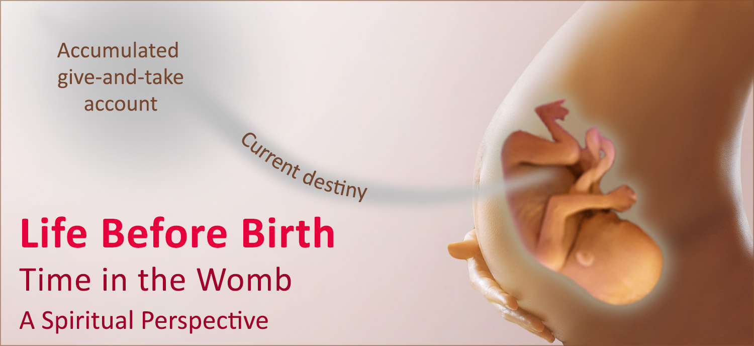 Life before Birth: The time in the womb