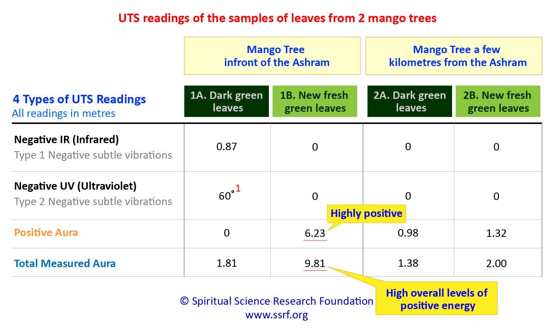 Analysis of mango leaves