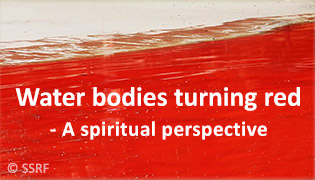 Water bodies turning red - A spiritual perspective