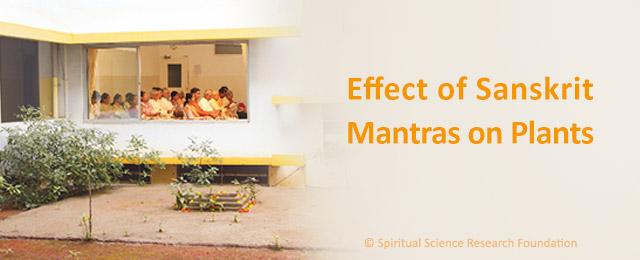 ENG-WEB--Effect-of--mantras--in-Sanskrit-on-plants-640x260px