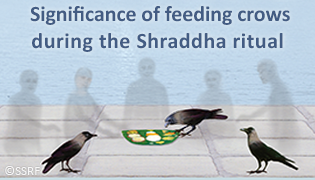 Significance of feeding crows during the Shraddha ritual