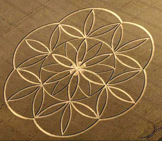 Crop circles made by positive entities