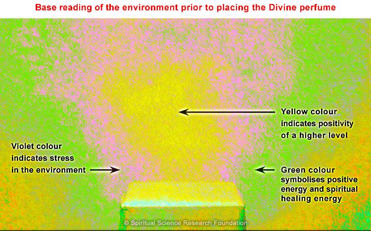 before pip divine fragrance