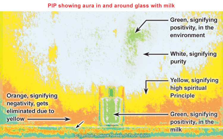 PIP with milk