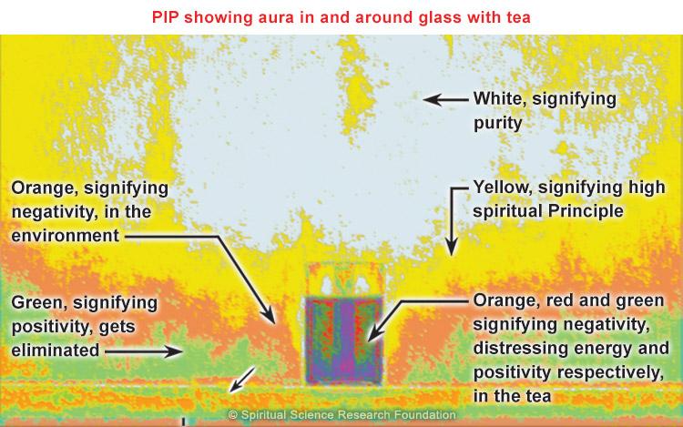 PIP with tea