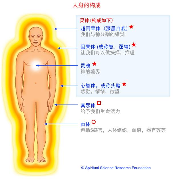 人体的结构-死亡之后的灵体