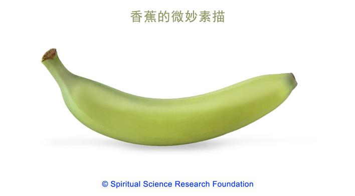5-CHIN_Banana-1