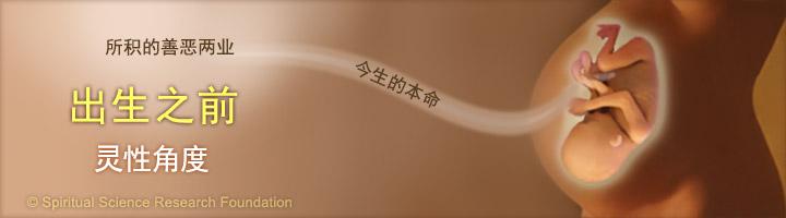 1-CHIN-Life-before-birth-landing
