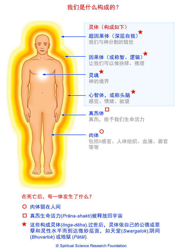 体内的微妙能量系统